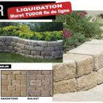 Tudor-liquidation